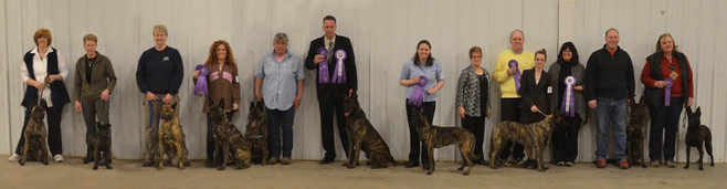 2014 Dutch Shepherd Dog Club of America Specialty Show participants